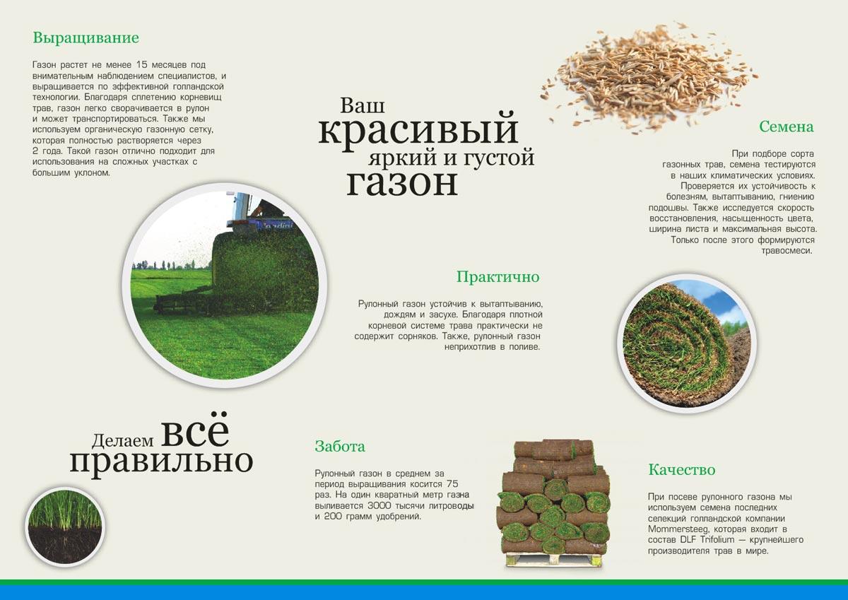 Технологии выращивания рулонного газона 77